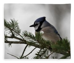 Chilly Jay Fleece Blanket