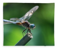 Close Up Dragonfly Fleece Blanket