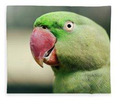 Close Up Of A King Parrot Fleece Blanket