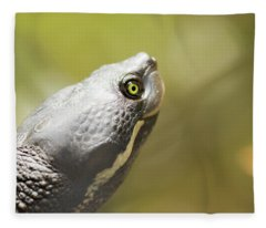 Close Up Of A Turtle. Fleece Blanket