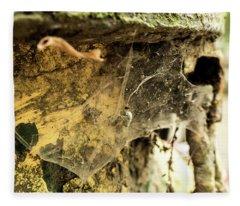 Cobweb Fleece Blanket