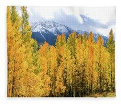 Colorado Aspens And Mountains 1 Fleece Blanket