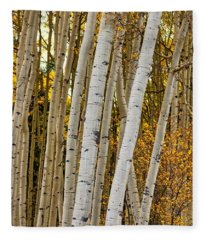 Colorado Aspens Fleece Blanket