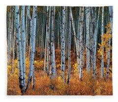 Colorado Autumn Wonder Panorama Fleece Blanket