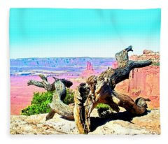 Colorful Desert Landscape Fleece Blanket