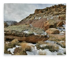 Colorful Dunes Near Colorado National Monument Fleece Blanket