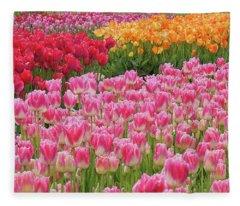 Colors Ignited Fleece Blanket