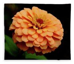 Content Zinnia Fleece Blanket