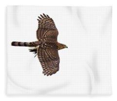 Cooper's Hawk With Prey Fleece Blanket