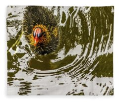 Coot Chick And Reflections Fleece Blanket