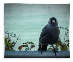 Cornish Crow Fleece Blanket