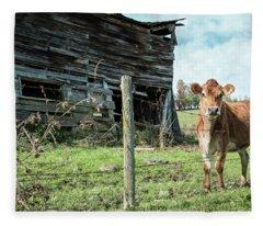 Cow By The Old Barn, Earlville Ny Fleece Blanket