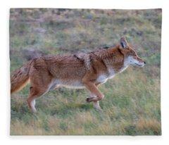 Coyote Portrait Fleece Blanket