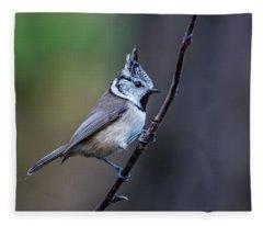 Crested Tit On A Twig Fleece Blanket