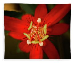 Crimson Beauty Fleece Blanket