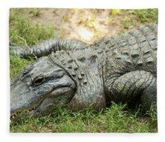 Crocodile Outside Fleece Blanket