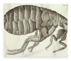 Cross-section Of A Flea From Micrographia Fleece Blanket
