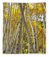 Crossed Aspens Fleece Blanket