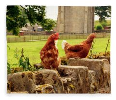 Cumbria,  Shap Abbey, Two Chickens. Fleece Blanket
