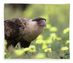 Curious Caracara Fleece Blanket