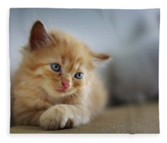 Cute Orange Kitty Fleece Blanket