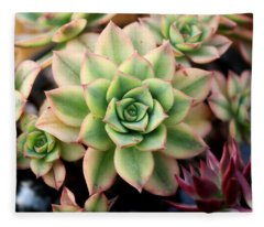 Cute Succulent Fleece Blanket