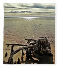 Cypress On The Beach Fleece Blanket