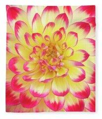 Dahlia Kenora Wow Flower Fleece Blanket