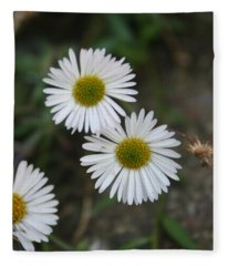 Daisy Daisy And Your White Petal Minding The Sun Core Fleece Blanket