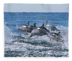 Dancing Dolphins Fleece Blanket