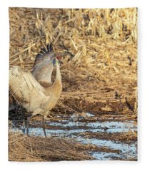 Dancing Sandhill Crane 2019-1 Fleece Blanket