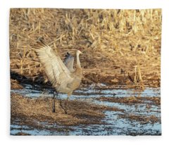 Dancing Sandhill Crane 2019-2 Fleece Blanket