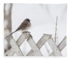 Dark-eyed Junco 2019-1 Fleece Blanket