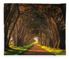Dawn At The Cypress Tree Tunnel Fleece Blanket