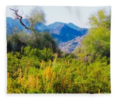 Fleece Blanket featuring the photograph Deep Desert Valley In A Sonoran Desert Spring by Judy Kennedy
