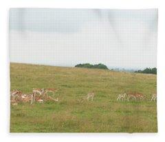 Deer Collection 1  Fleece Blanket