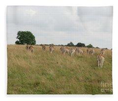 Deer Collection 11 Fleece Blanket