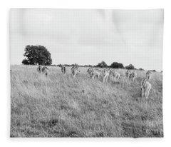 Deer Collection 8  Fleece Blanket