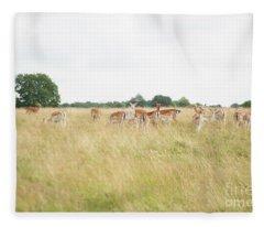 Deer Collection 9  Fleece Blanket