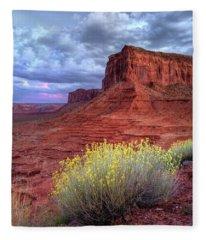 Desert Bouquets On A Stormy Eve Fleece Blanket