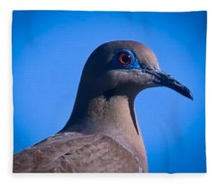 Fleece Blanket featuring the photograph Don't It Make My Brown Eyes Blue by Judy Kennedy