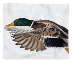 Drake Mallard 2019-6 Fleece Blanket