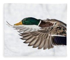 Drake Mallard 2019-6 Fleece Blanket