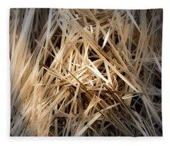 Dried Wild Grass I Fleece Blanket