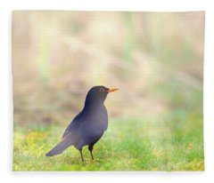 Early Bird Fleece Blanket
