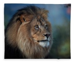 Early Morning Lion Portrait Fleece Blanket