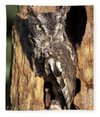 Eastern Screech Owl 92515 Fleece Blanket