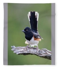 Eastern Towhee 50413 Fleece Blanket