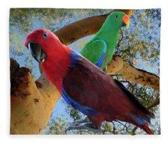 Eclectus Parrots Fleece Blanket
