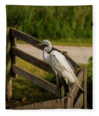 On The Fence Fleece Blanket